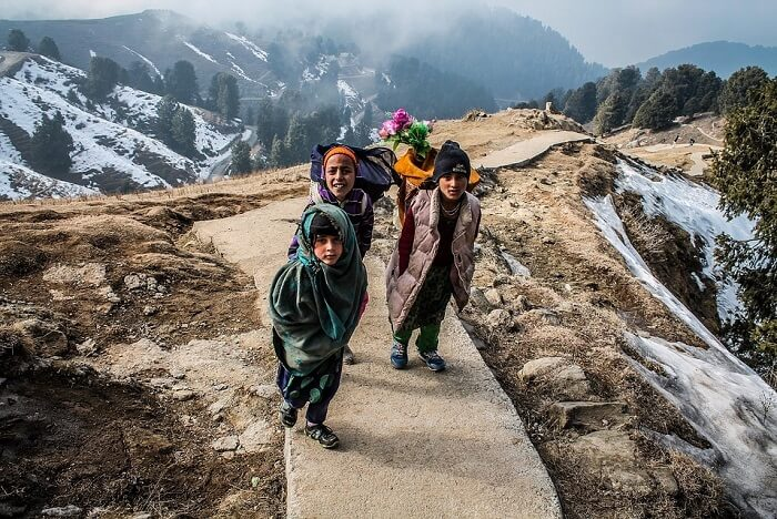 Best Time To Visit Royal Manas National Park In Bhutan