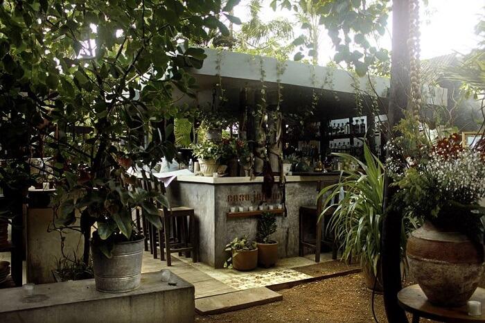 Casa Jaguar in Mexico
