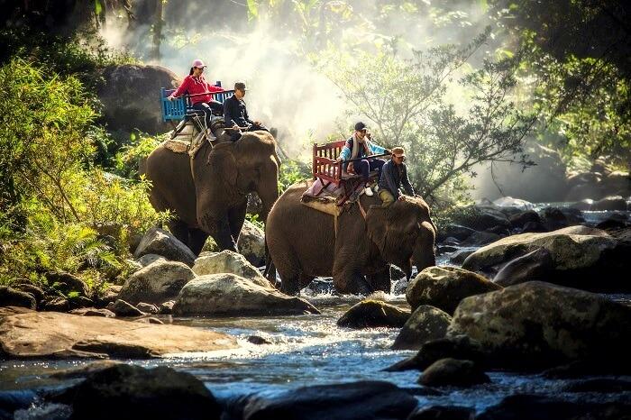 Chiang Mai Trekking Cover