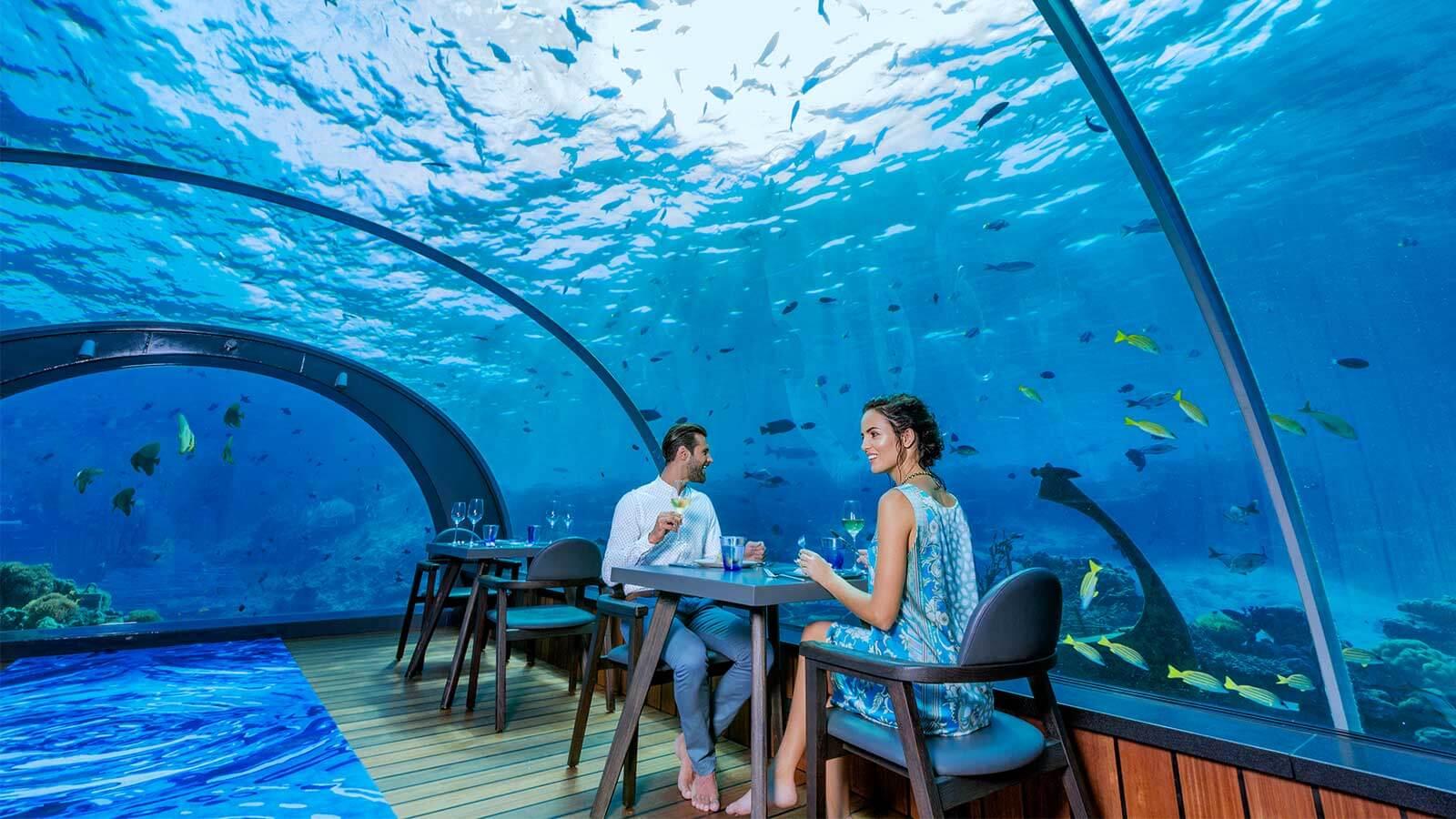 underwater dining experience