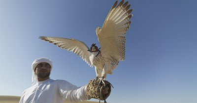 A man holding a bird in the desert