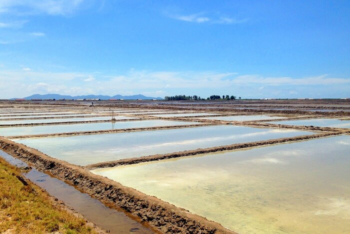 salt production in Cambodia