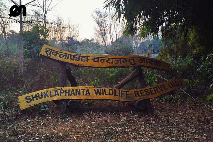 Shuklaphanta Wildlife Reserve in nepal