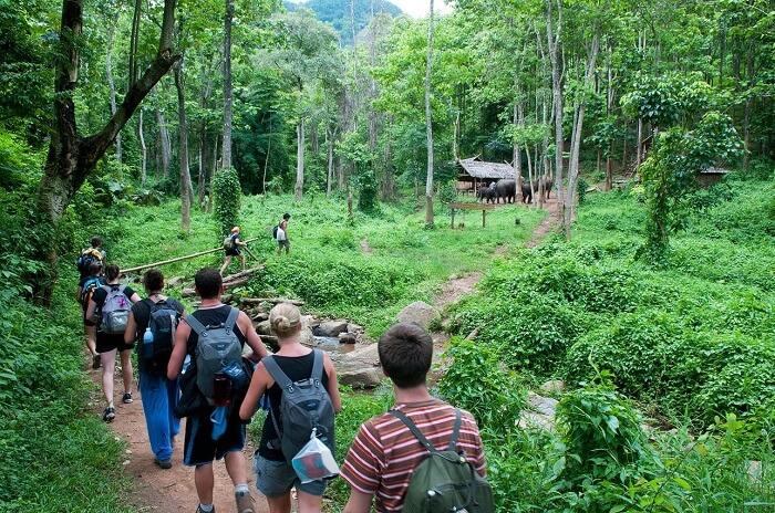 The Baan Pha Dang Trek