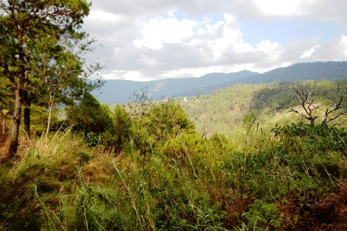 Zangto Pelri Park