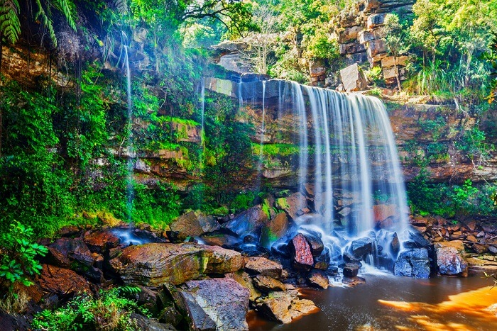 cambodia national parks cover