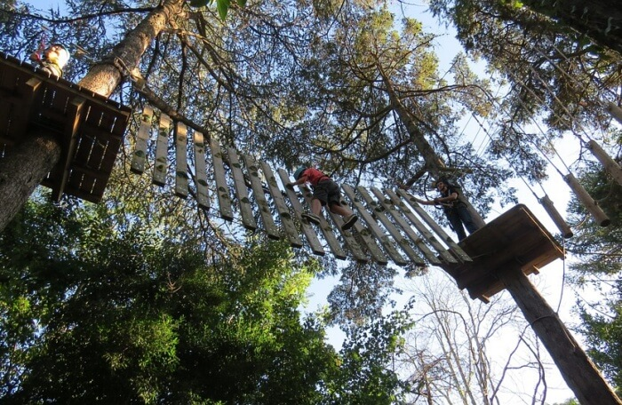 canopy-tours