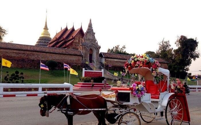 horse ride Thailand