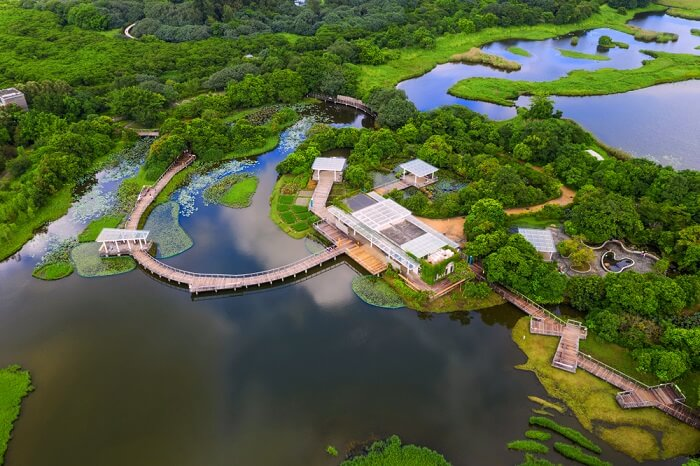 Hong Kong Wetland Park: A Complete Guide For Vacationers