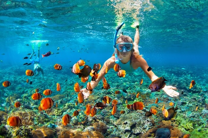 top 10 exciting spots for snorkeling in mexico you must visit