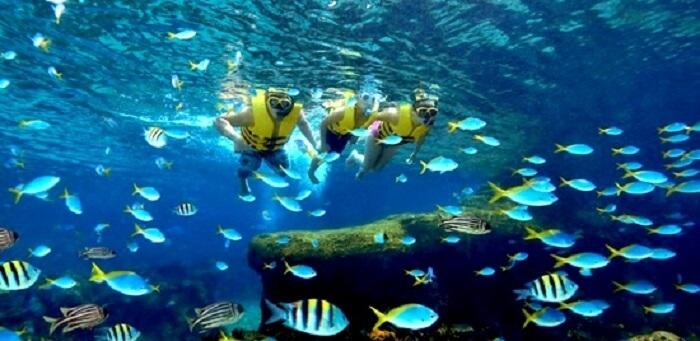 Rainbow reef in waterpark