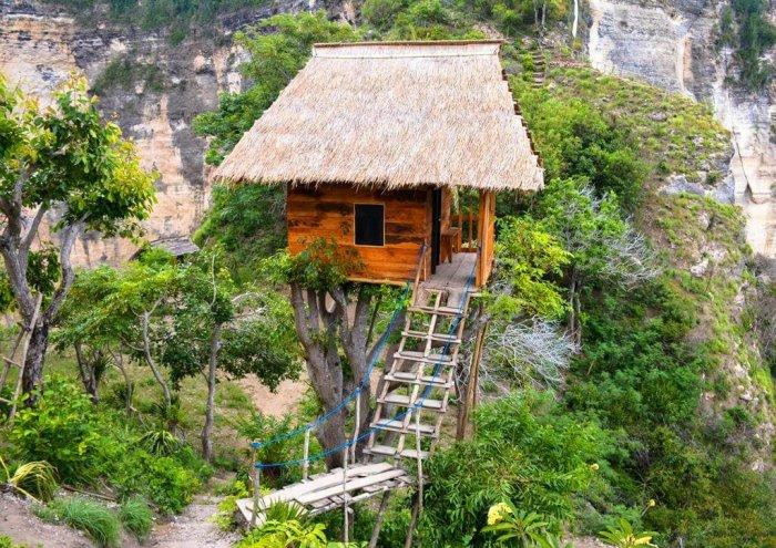 rumah pohon tree house