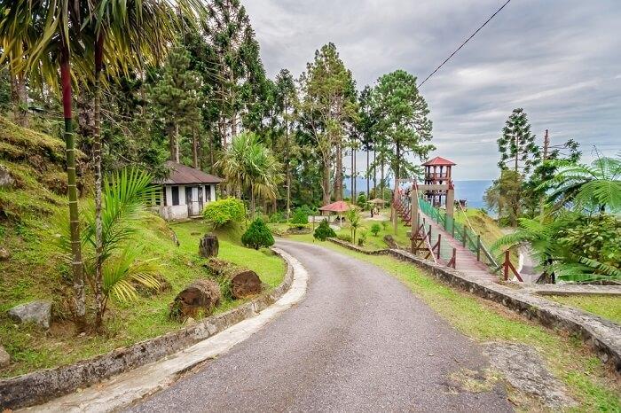Bukit Larut Main image