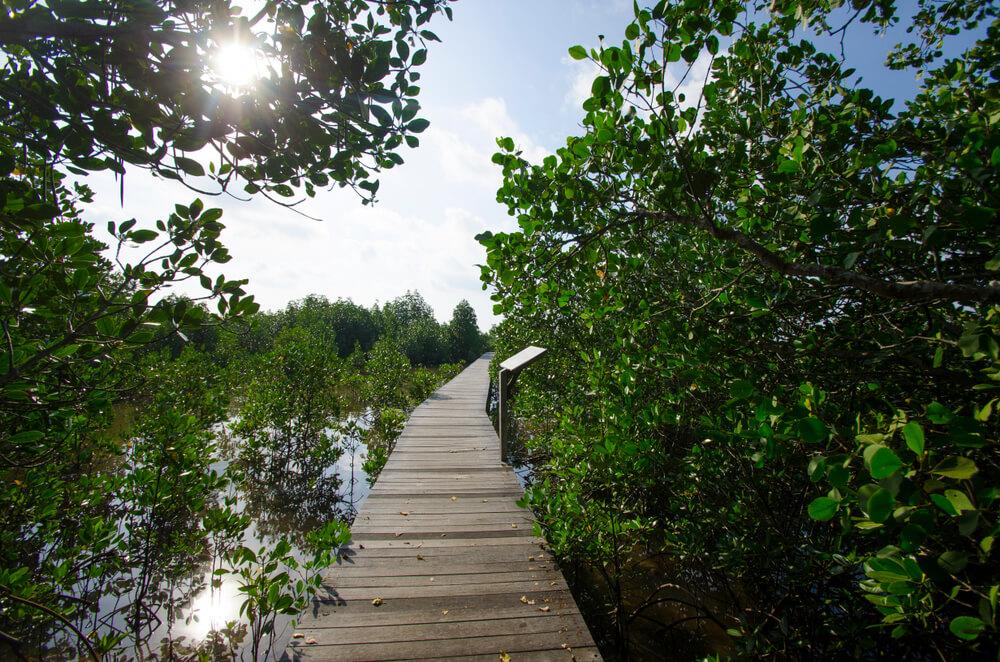 area offers trekking