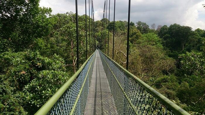 Amazing walking trail