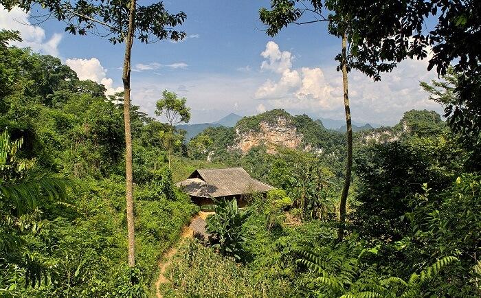 dense rainforests, deep valleys,