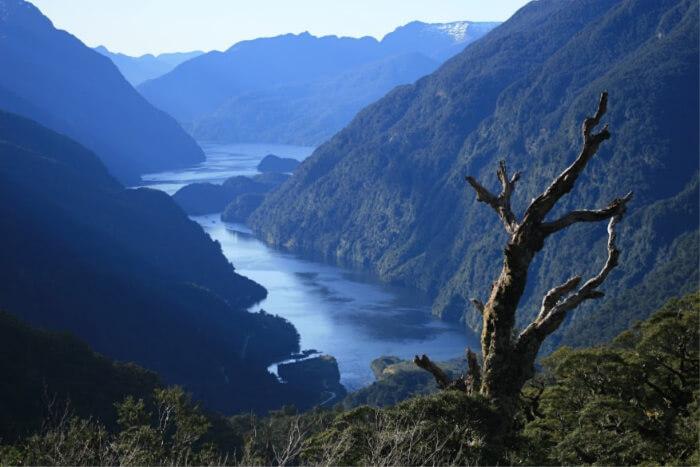Fiordland Doubtful sound