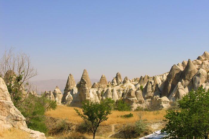 The beautiful sedimentary rock
