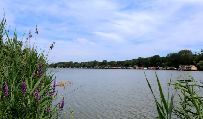 Lake Bokodi