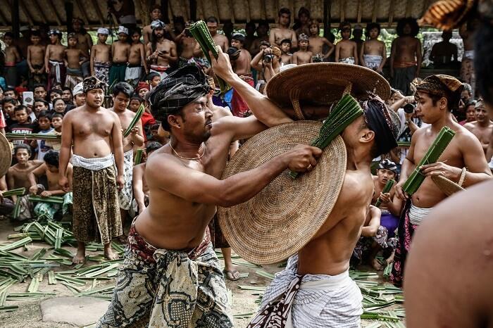 Ancient Pandanus War Ritual Held In Balinese Village