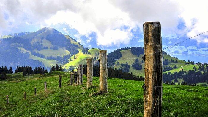 Mounty Rigi