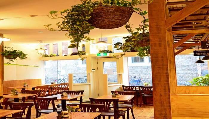 Omelegg Restaurant