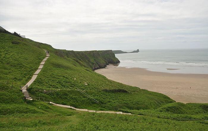 green grass and beach