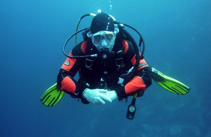 Scuba Dive In Milford Sound