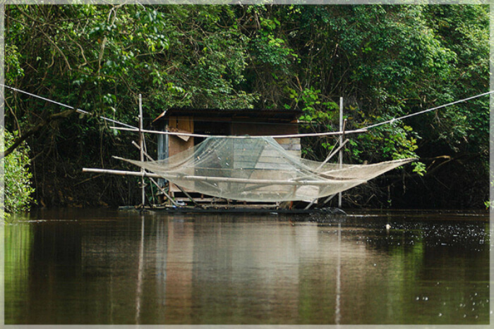Selambau Nets
