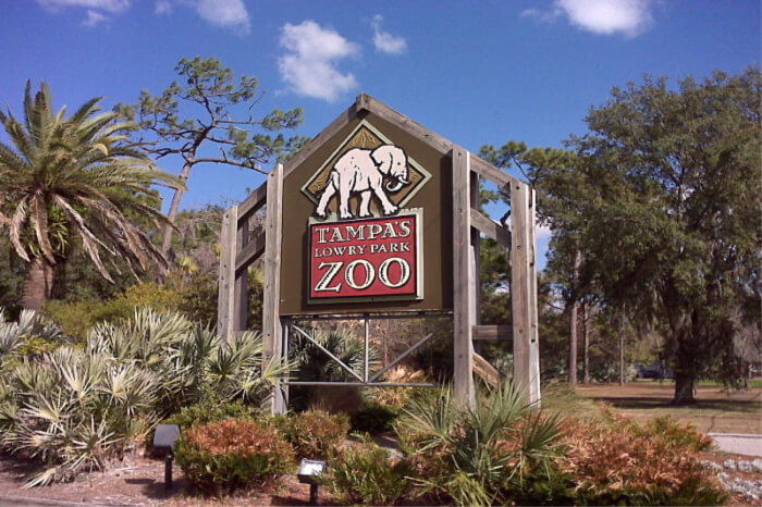 Tampa Zoo