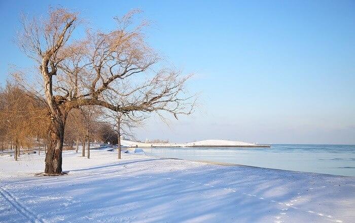 winter temperature in Chicago