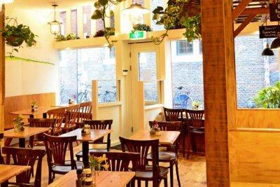 Amazing and best service providing restaurants