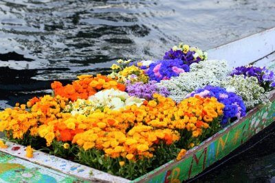 Awesome festivals of Vietnam