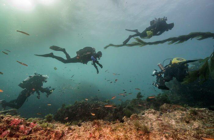 A Paradise for Scuba Divers