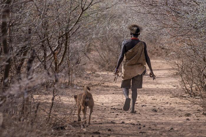 Best Time For Safari In Tanzania