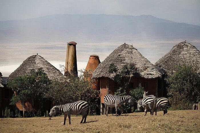 Beyond_Ngorongoro_Crater_Lodge
