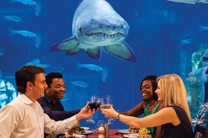 Cafeteria Mauritius Aquarium