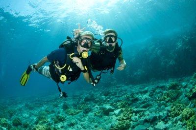 Two scuba divers under the ocean