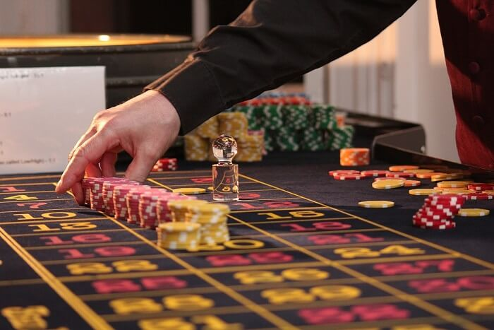 Cover for Casinos in New Zealand