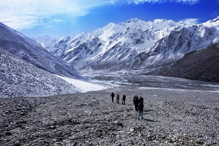 Experience the beauty of Langtang Valley Trek