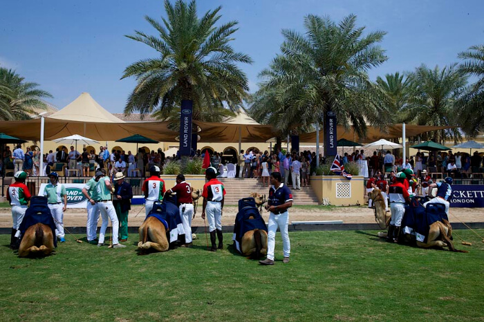 Dubai Polo And Equestrian Club in Dubai