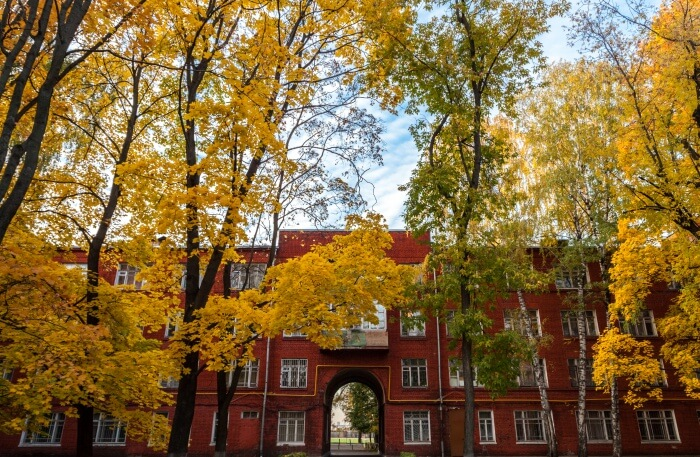 Experience Golden Autumn In Moscow