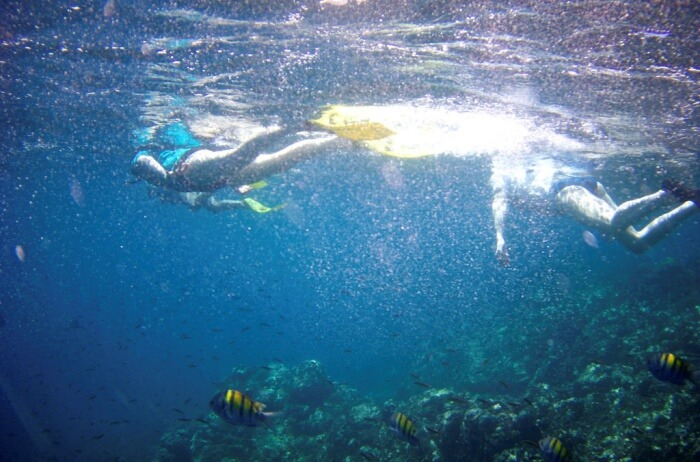 Experience The Sport Of Snorkelling