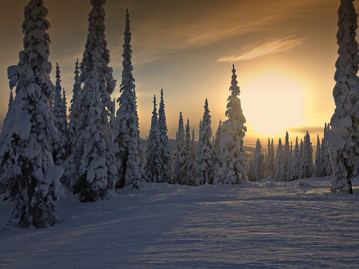 Experience The Winter Solstice