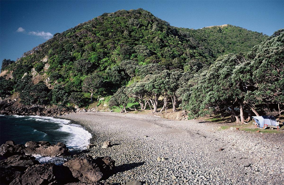 Fantail Bay