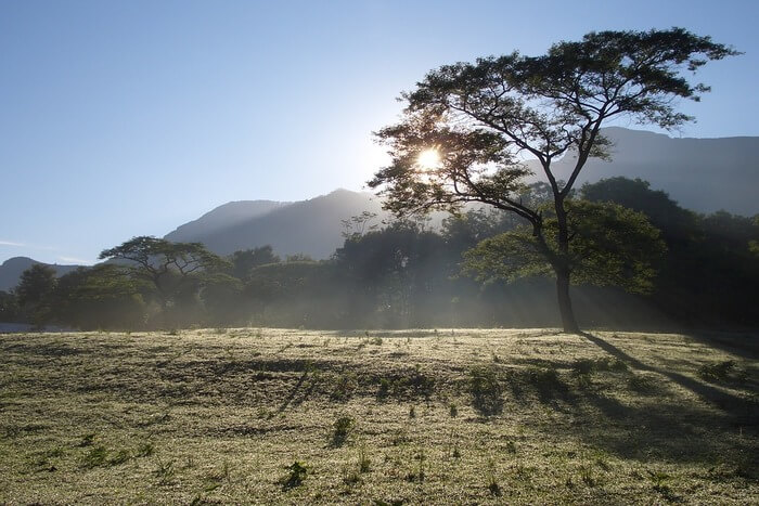 Wood Sol Sunbeams Tanzania Landscape