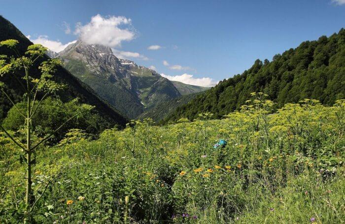 From Svaneti To Racha