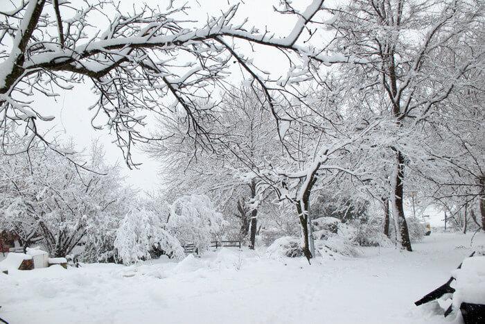 Hike in snowfall