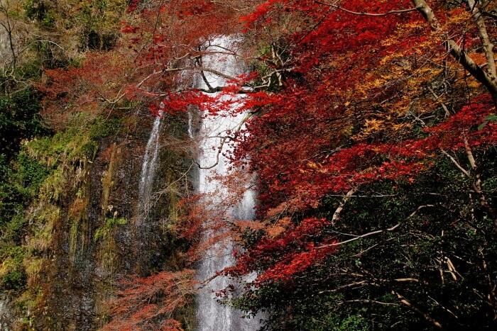 Hike to Minoh Falls