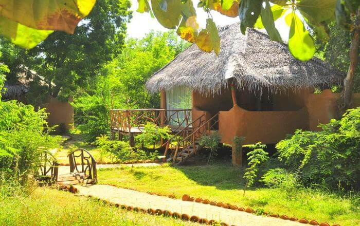 Eco-Park of hotel